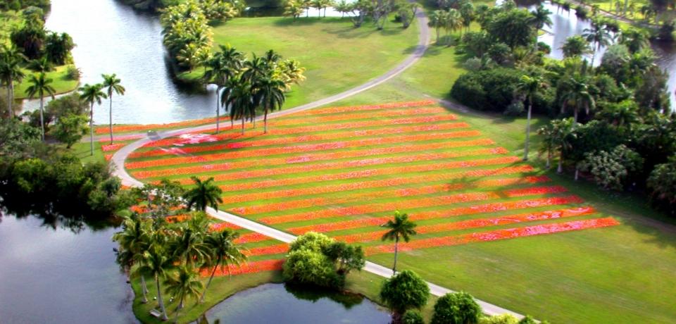 Patricia Van Dalen-Luminous Gardens 2003
