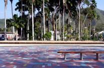 Jardín de Calas (Garden of callas)