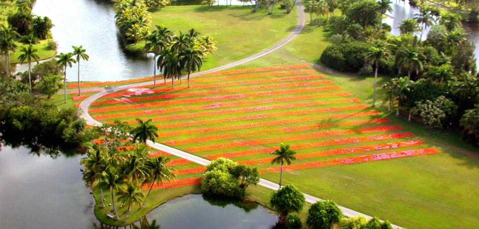 Fairchild Tropical Garden, Coral Gables, USA